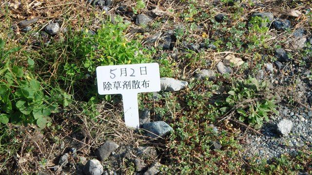 除草剤散布の告知プレート