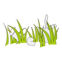 雑草が生い茂る