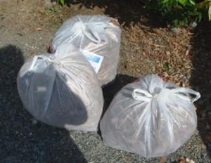 回収したゴミ(枯れ草)の量